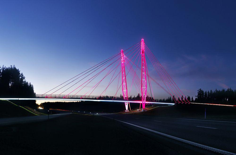 Farger bru over E6 rosa i solidaritet