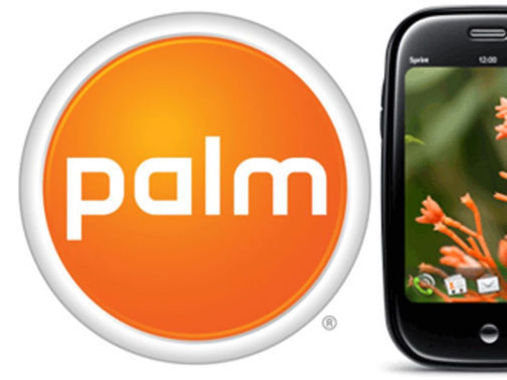 Palm-aksjonærene sa «ja»