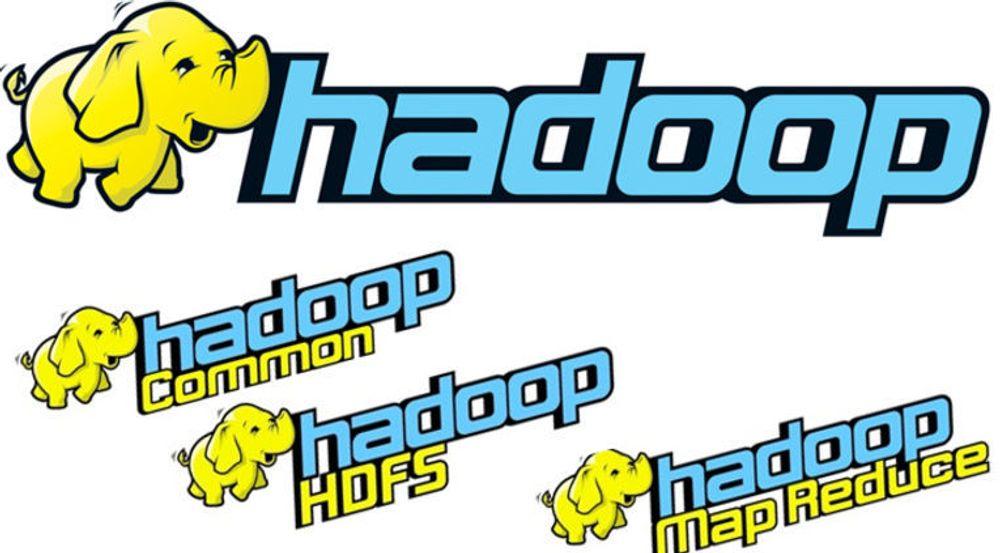 Hadoop er fordelt på tre underprosjekter. Verktøyet er oppkalt etter koseelefanten til sønnen til initiativtaker Doug Cutting.