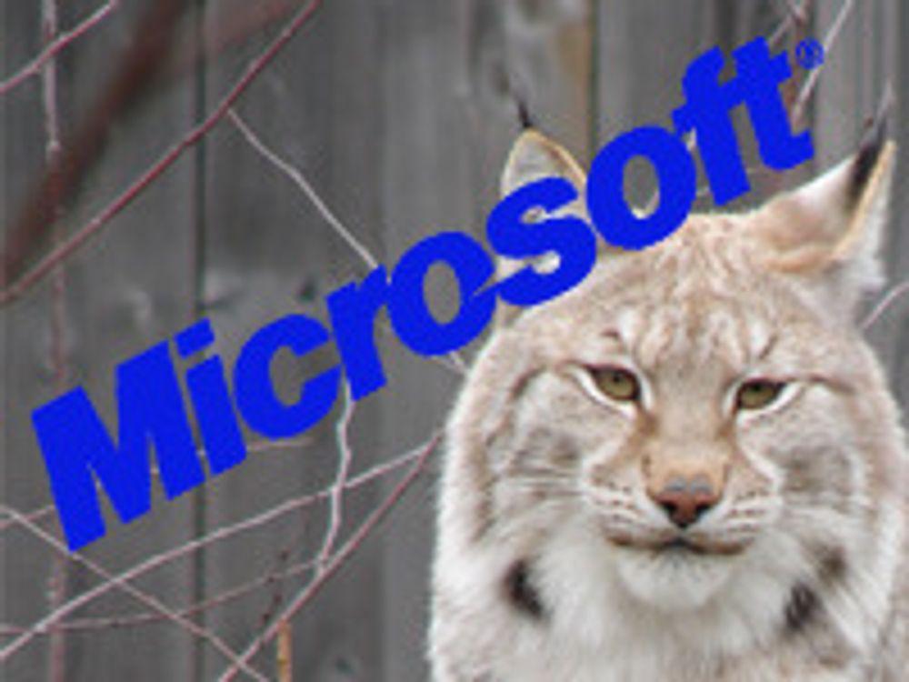 «Lync» er Microsofts nye samhandling