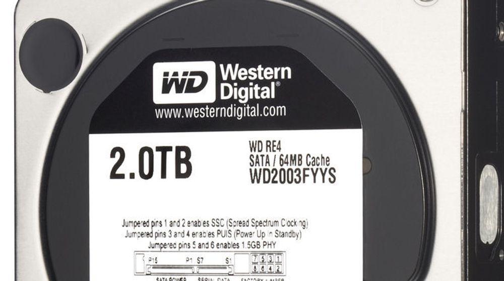 Wester Digital WD RE4-harddisk for enterprise-markedet.