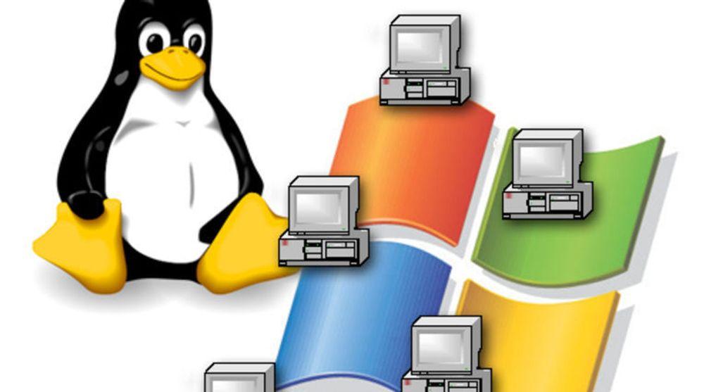 Samba gjør det blant annet mulig å bruke Linux som server for fil- og utskriftstjenester for Windows-basert maskiner.