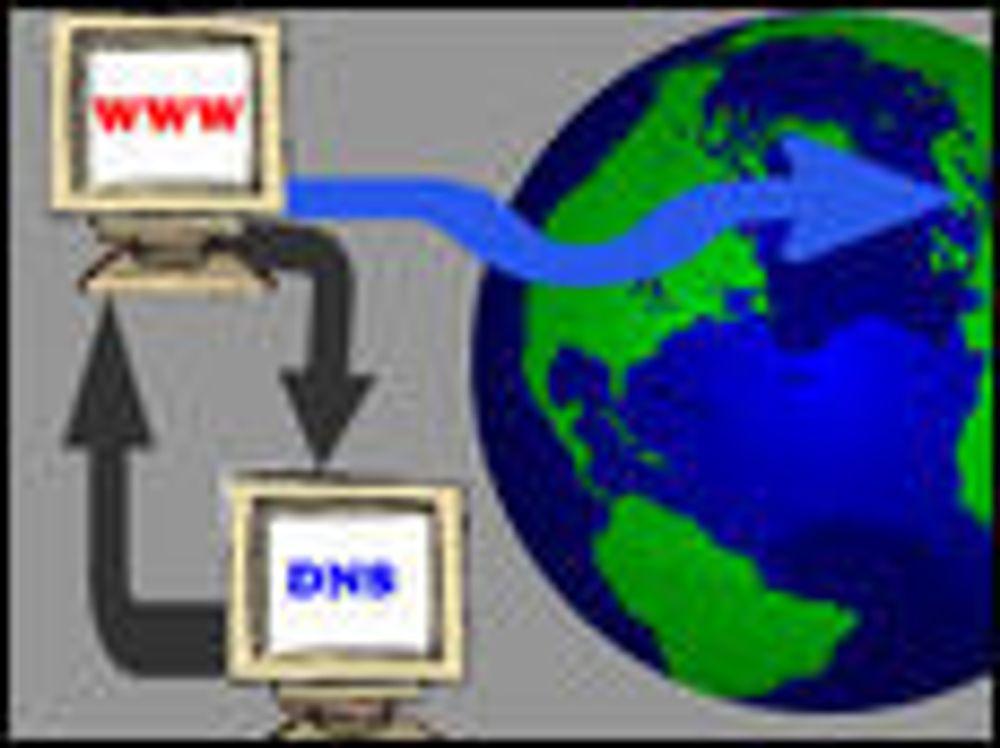 Hemmelig samarbeid reddet DNS-serverne