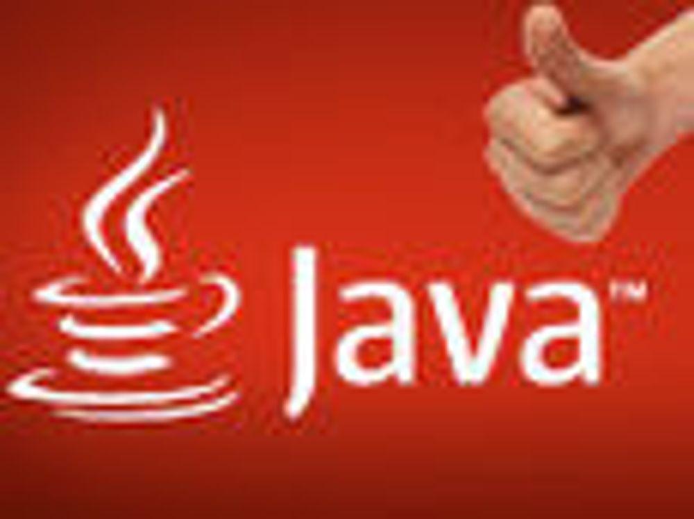 Nesten full enighet om Java 7