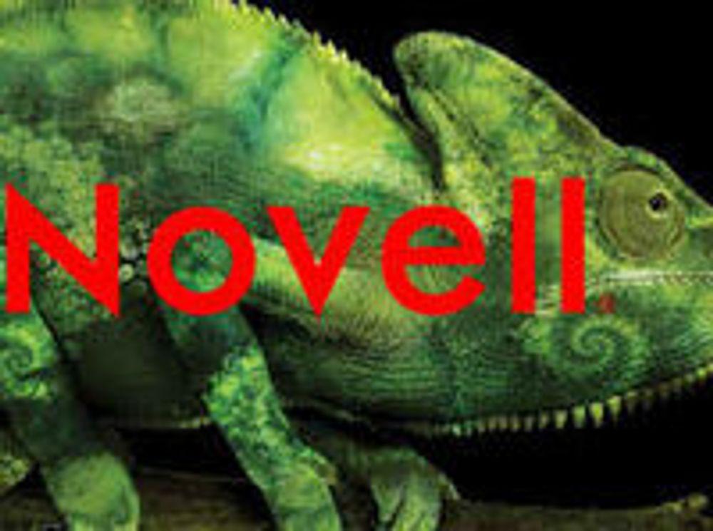Hedgefond leverer overbud på Novell