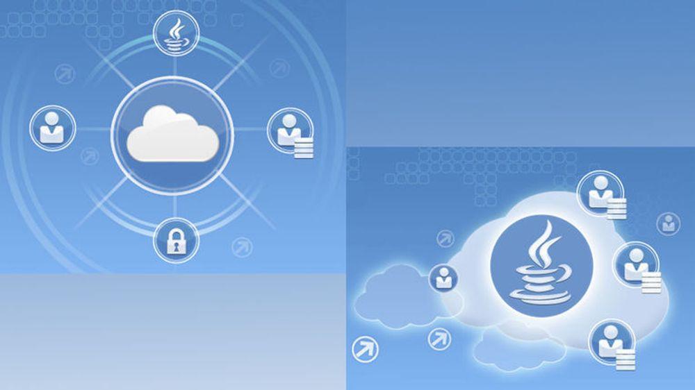 Oracle har bygget opp en skytjeneste på grunnlag av egen dedikert maskinvare, og tilbyr tjenester knyttet til database, mellomvare og applikasjoner, med tilhørende sikkerhet og andre garantier (tv). Tilbudet er selvbetjent, og omfatter muligheten til å kjøre egenutviklede Java-applikasjoner på Oracles WebLogic-server i nettskyen, uten noen form for justering av kode (th).