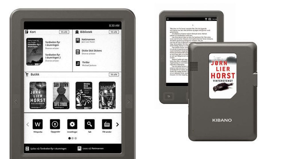 I Norge har avgiften på e-bøker bidratt til kuriøse initiativ, som Norli Libris' salg av bøker på magnetkort. Det krever et spesielt lesebrett.
