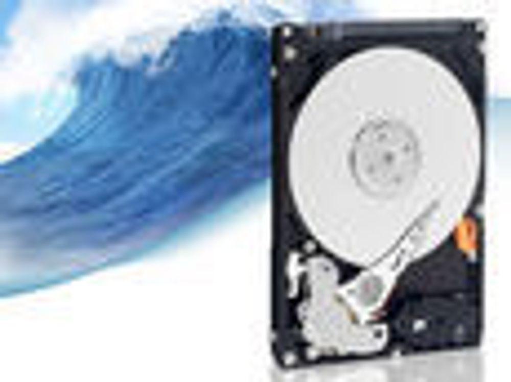 Først med liten terabyte-harddisk