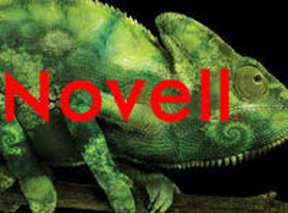 Novell går i oppløsning