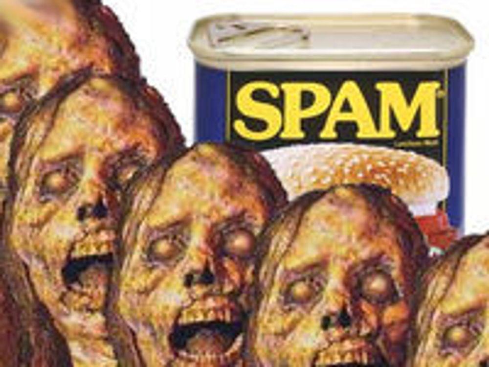 Verdens verste spammere må flykte