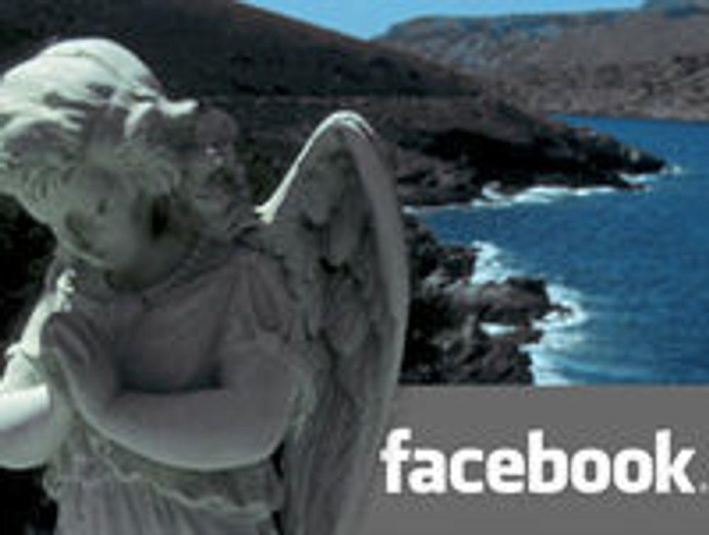 Facebook-eiere gir seg tidobbel stemme