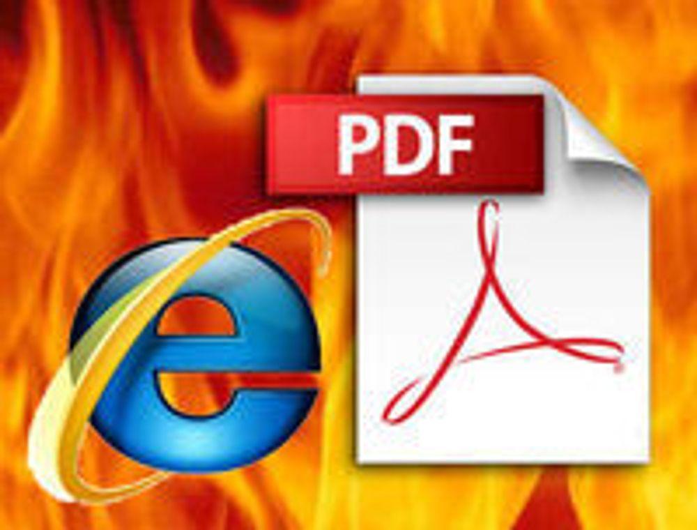 Fortrolig info avsløres av PDF-filer på nettet