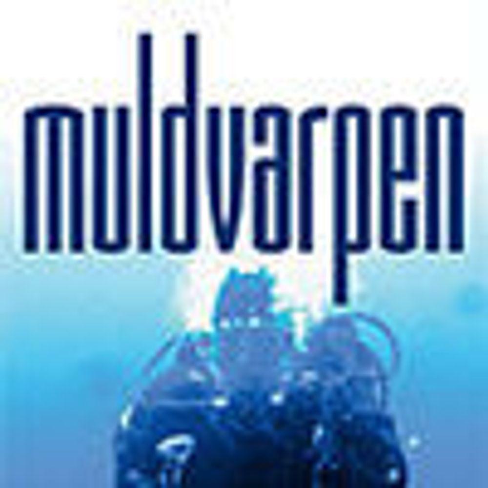 Bleke hackere i skyggen av macho dykkere