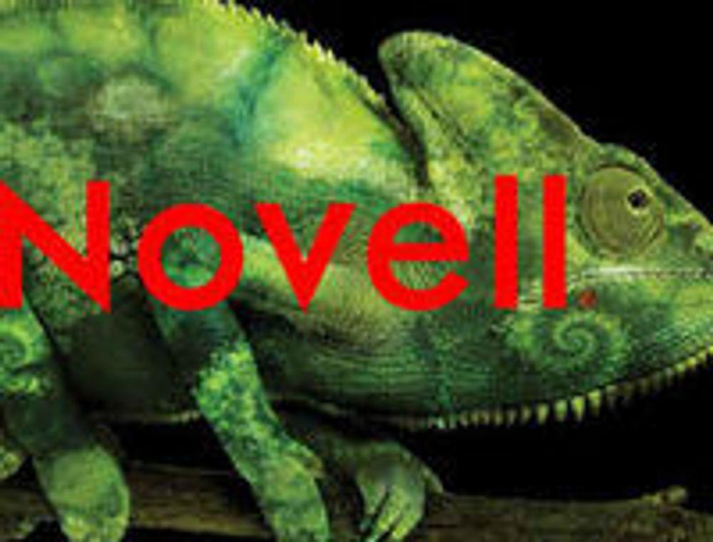 Novell avslutter året med stor nedskrivning