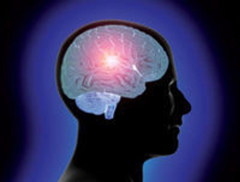 En nordisk undersøkelse konstaterer at hjernesvulst ikke er blitt mer hyppig siden 1998, trass i kraftig økt bruk av mobiltelefon i alle lag av befolkningen.