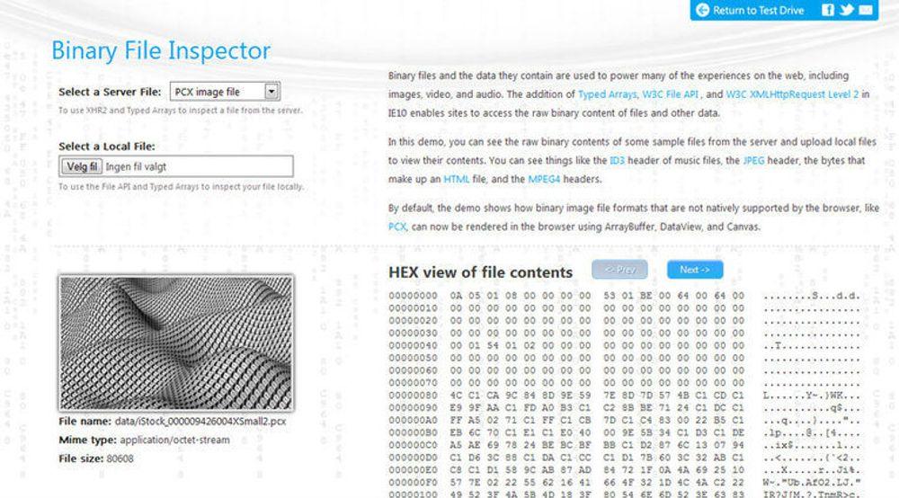 Binærfil-inspeksjon er blant de nye tingene man skal kunne bruke Internet Explorer 10 til. Her er Microsofts demo av dette, riktignok vist i Google Chrome.
