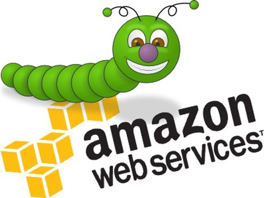 Leide Amazons nettsky for å hacke Sony