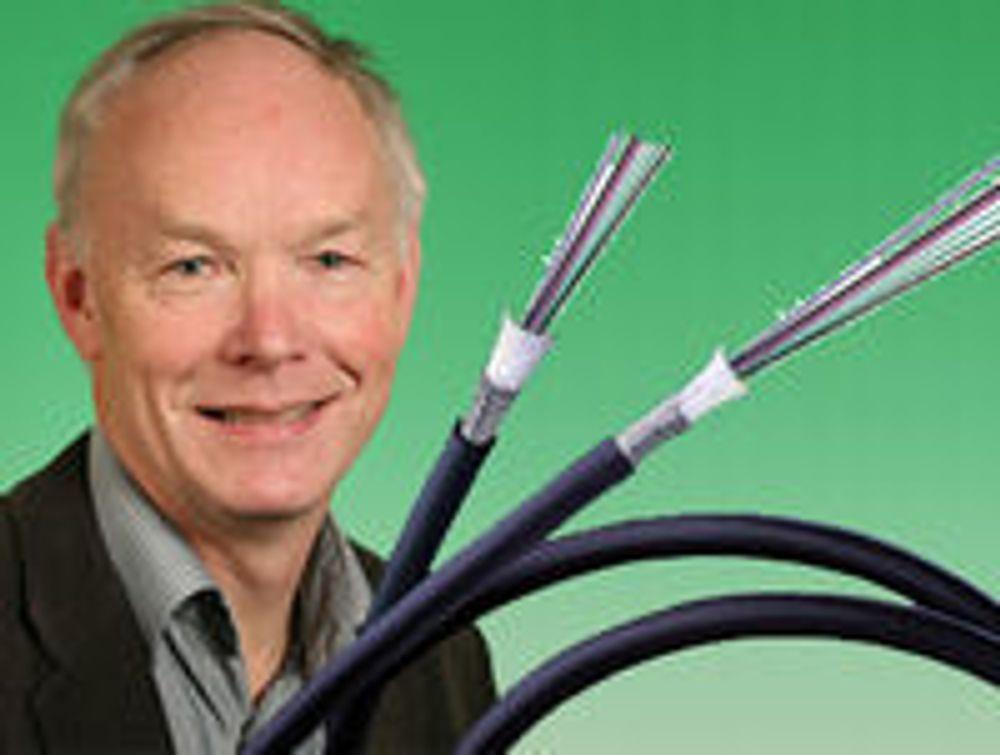 - Staten bør overta Telenors fiber