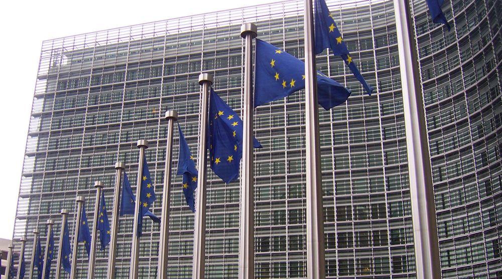 EU-kommisjonen vil legge forholdene til rette for økt bruk av nettskyen i privat og offentlig sektor. Tiltakene omfatter teknologisk standardisering, standardisering av kontrakter og felles europeisk lovgivning, samt støtte til forskning og internasjonal dialog. (Bildet viser EU-flagg foran EU-kommisjonens hovedkvarter i Brussel.)