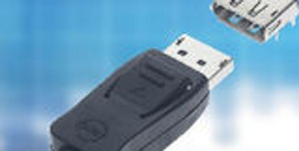 Det første DisplayPort-produktet