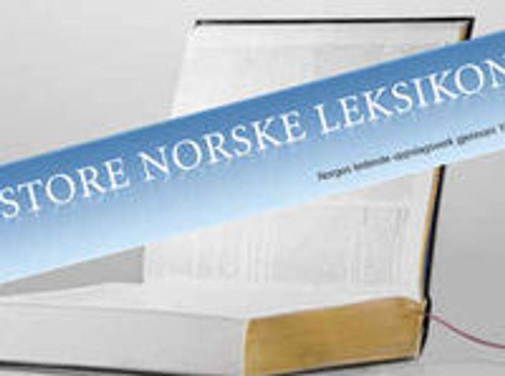 Store norske er i pengeknipe