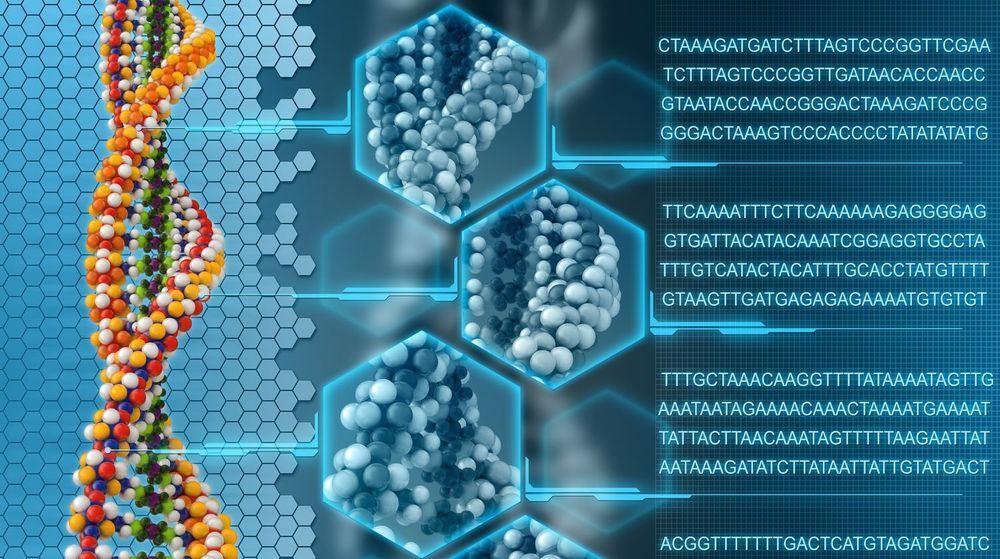 Hver av basene i DNA - A, C, G og T, kan representere en binær verdi.