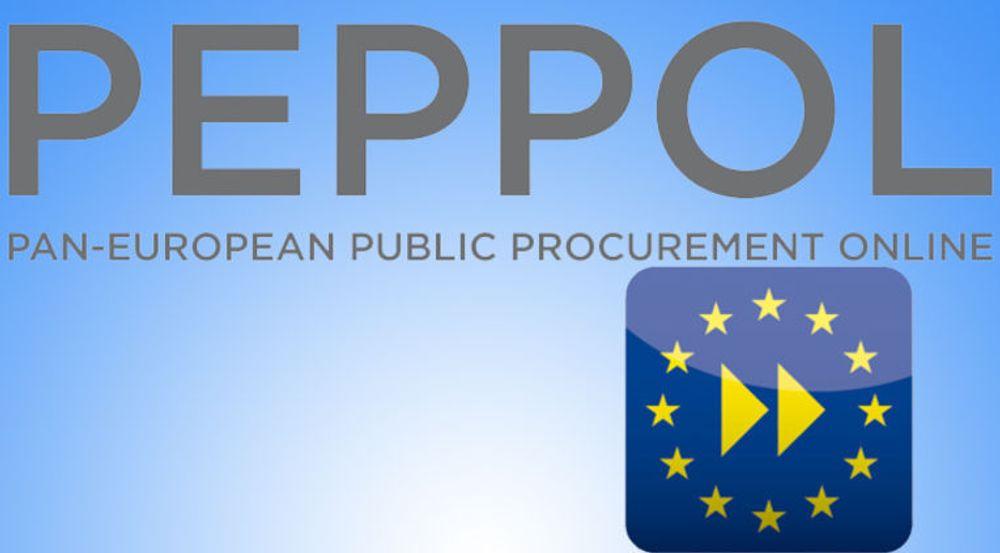 Uten statlig tvang vil standarder som PEPPOL fortsatt sveve i det blå, mener Steinar Overbeck Cook.