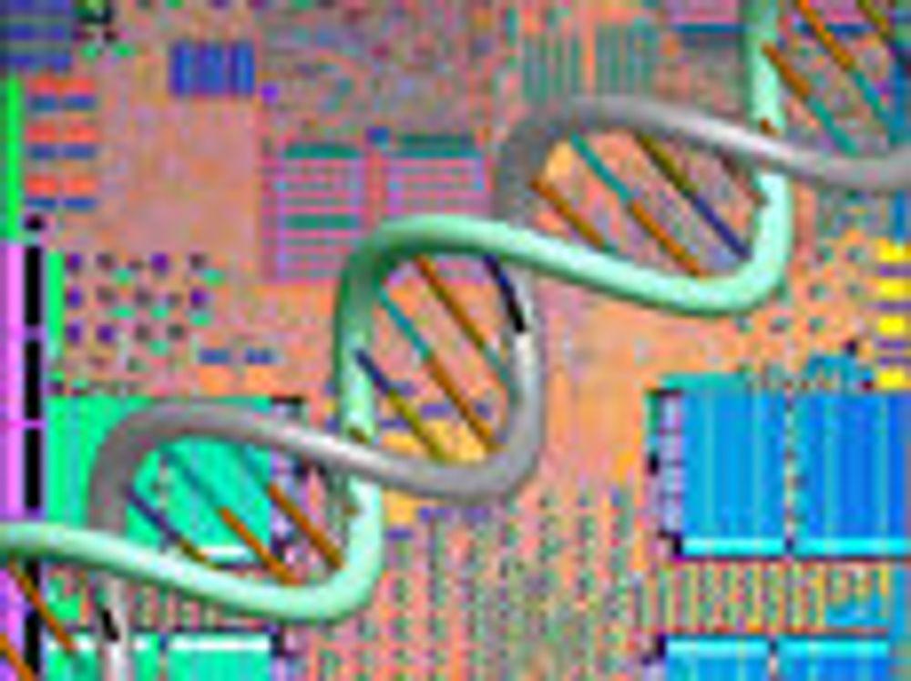 Bygger mikrobrikker ved hjelp av DNA