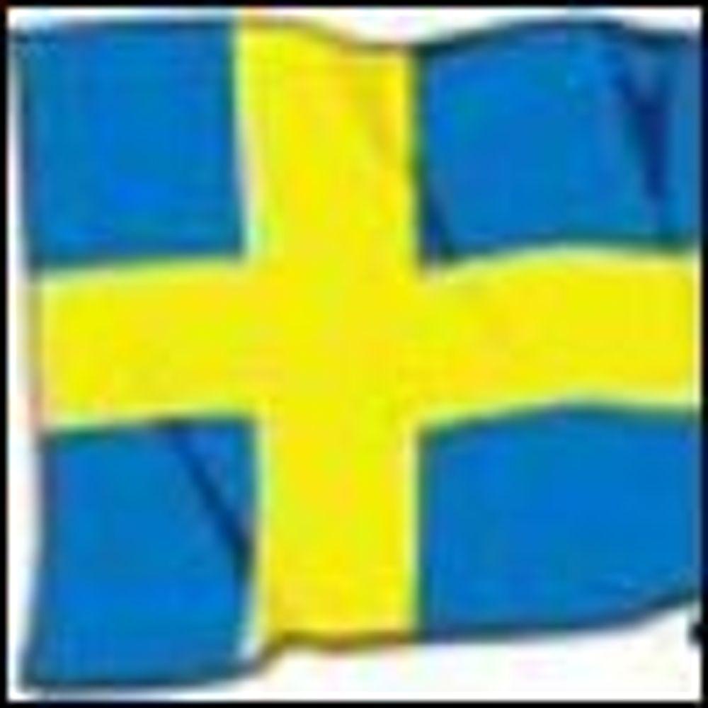 Snart tomt for svenske domenenavn