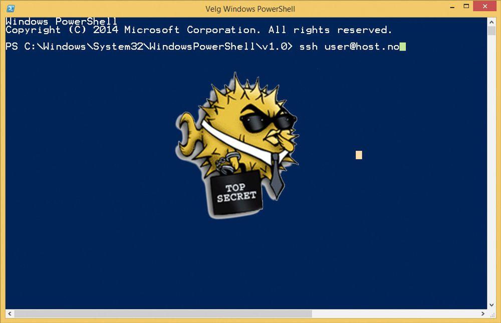 Microsoft vil bygge SSH-støtte inn Windows PowerShell, et kommandolinje-basert administrasjonssystem for Windows som ble introdusert med Windows Vista.