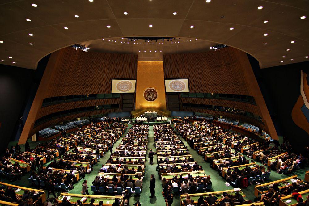 FN vil bevise at de tar personvern på alvor, og har ansatt en egen ekspert som skal jobbe med globale utfordringer knyttet til dette.