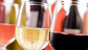 Smak de beste vinene fra 40 vinhus