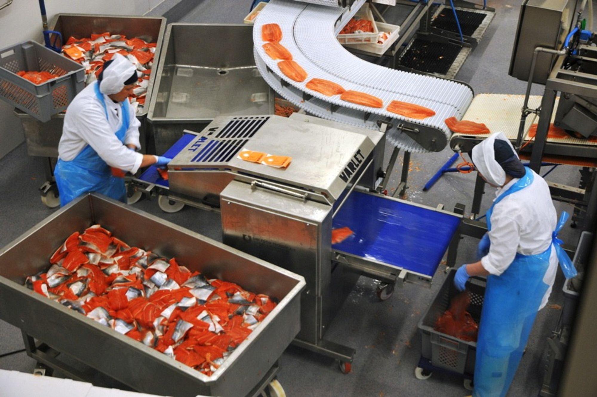 Et nytt vedlikeholdssystem skal sørge for skikkelig kvalitet og vekst hos Lofotprodukt.