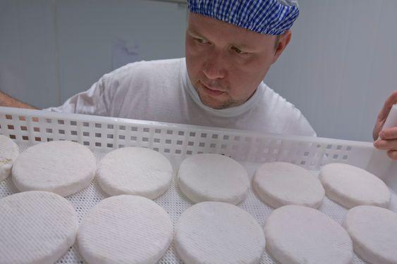 Egil Smith-Meyer sjekker det som skal bli ost i verdenstoppen. Foto: Per Kvalvik.