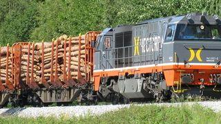 Tømmer på tog sparer 2600 tømmerbiler gjennom Oslo