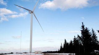 Turister strømmer til for å se gigant-vindmøller