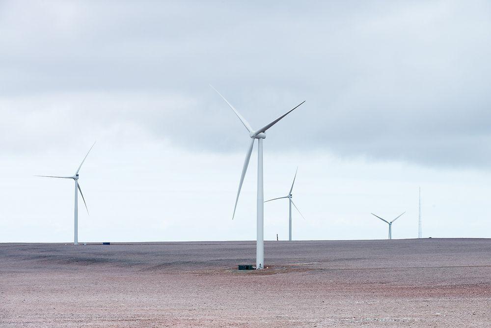 Raggovidda vindpark har til nå hatt en kapasitetsfaktor på hele 58,8 prosent. Turbinene har altså produsert 58,8 prosent av det de ville gjort hvis de hadde gått på full effekt hele tiden. Det er langt mer enn det som har vært vanlig ved andre vindkraftverk i Norge.