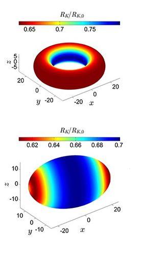 BILDE 3: Figuren viser nanopartikler med ulike former som tilføres varme. Den viser hvordan kapitsamotstanden (se faktaboks) mot varmestrømmen varierer på ulike deler av partikkelen. Motstanden er lavest i de røde områdene, som blir varmet hurtigere.