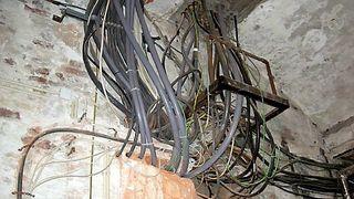 Mugg, sopp og veggdyr: – Bygget er en fare for liv og helse