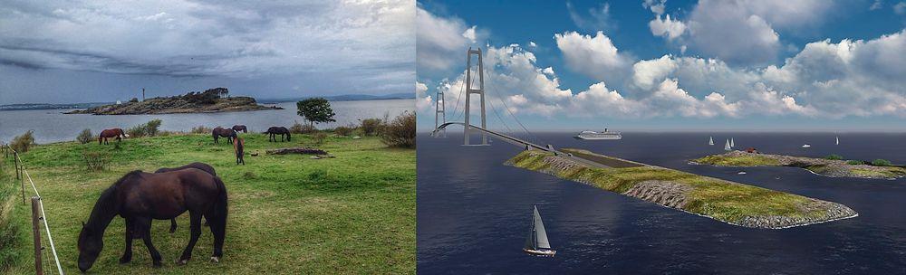 Aksjonsgruppa Nei til fjordkryssing via Jeløy mener at brua vil ødelegge naturområder, både visuelt og fysisk. På sin nettside sammenligner de situasjonen på bildet i dag med hvordan det i fremtiden vil bli.