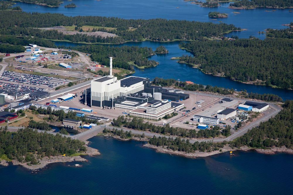 Selen Torsten, som viste seg å være et hunndyr, har holdt til i inntaksbassenget ved reaktor 3 på Oscarshamn kjernekraftverk siden november.