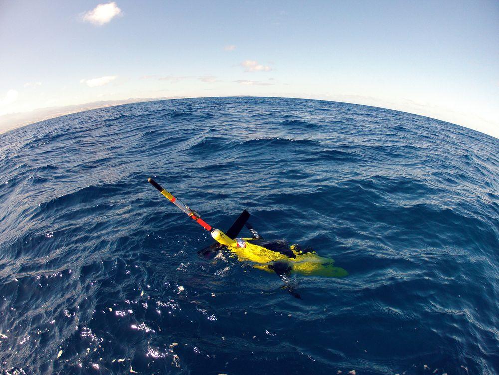 Seaglider fra Kongsberg Underwater Technology har et spesielt framdriftssystem og et batteri som gjør at den kan holde 10 måneder under vann.