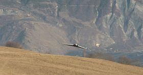 DISCO farer gjennom luften raskere enn andre droner.