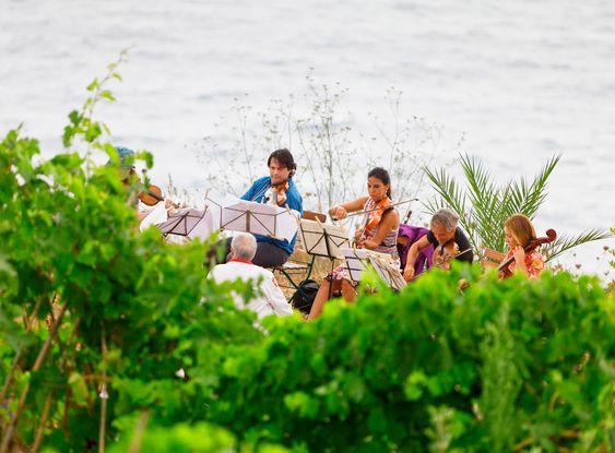 Hele Castagna-familien er musikalske og spiller gjerne ute i vinmarken.