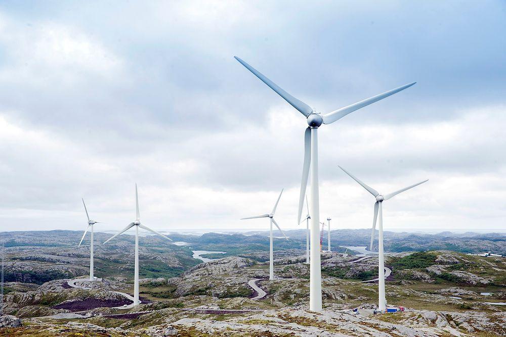 – For raskt: NVE saksbehandler utbyggingen av fornybar energi så raskt at miljø- og friluftsorganisasjoner ikke rekker å sette seg inn i alle, advarer Christian Steel i Sabima.
