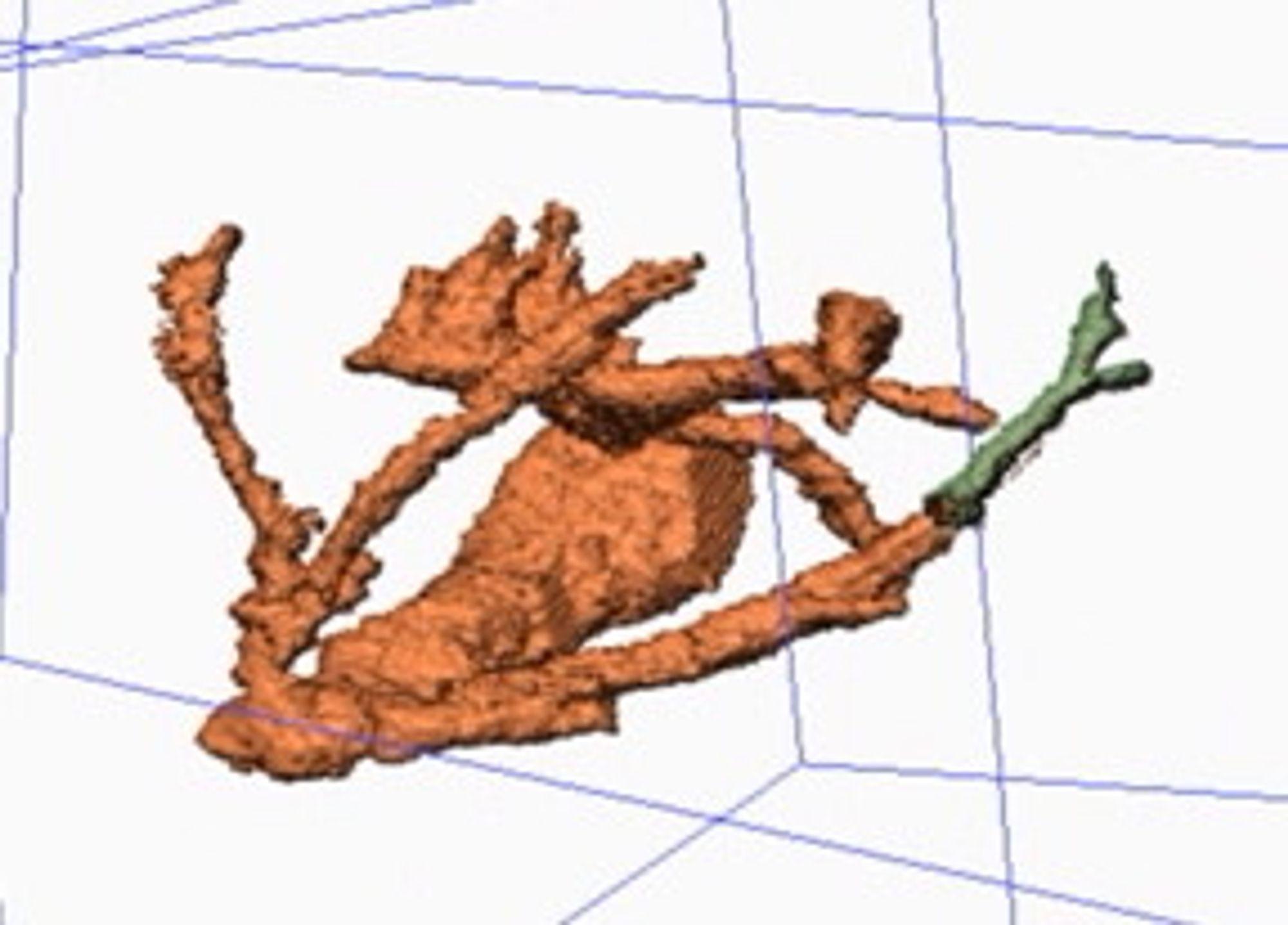 En ny teknikk reduserer støy i 3D-bildene samtidig som den bevarer detaljene.