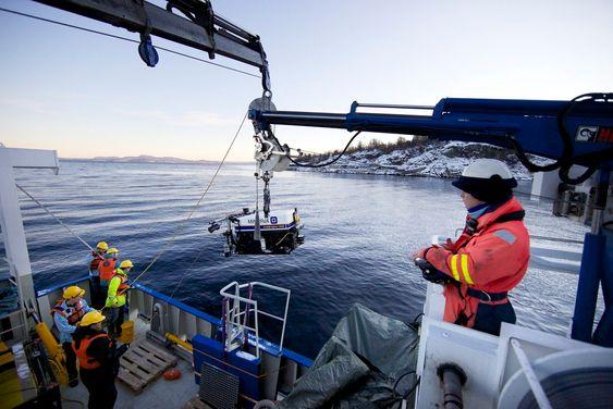 På tokt med AUR-Lab i Trondheimsfjorden. Fra forskningsfartøyet Gunnerus settes undervannsroboten (ROV) Minerva ut og sendes ned til havbunnen.