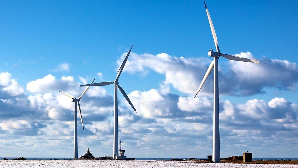 Vindkraft er god butikk mener både Google og Ikea.
