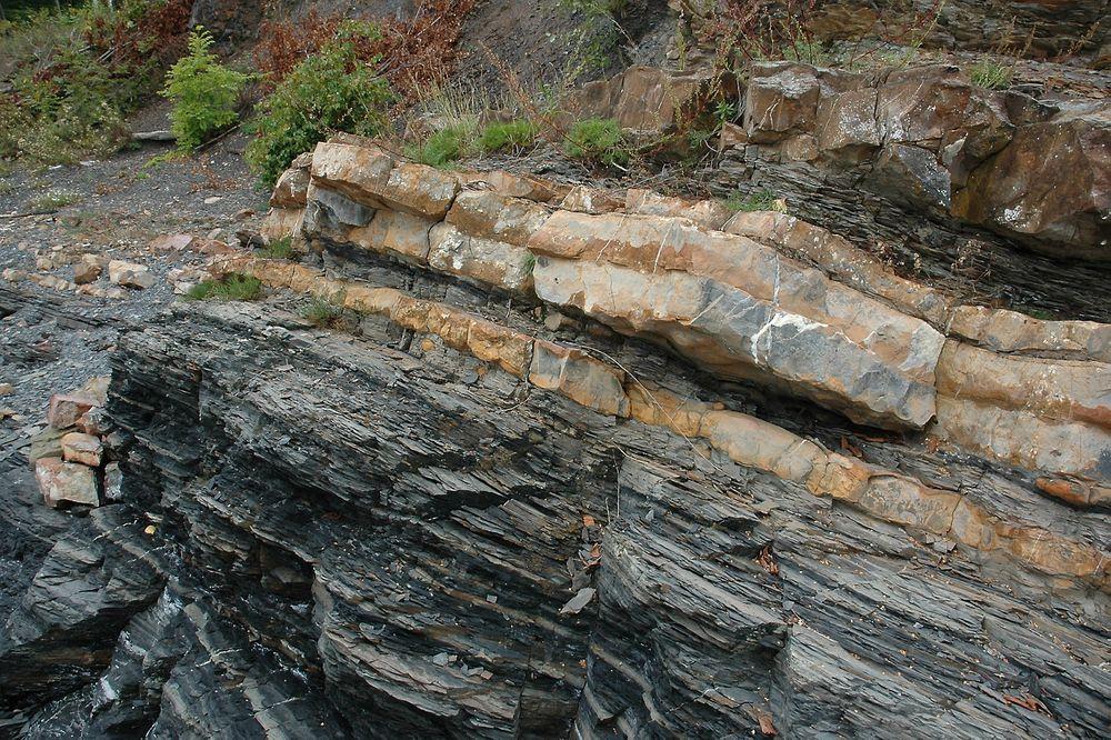 Alunskiferen - her under kalkstein - kan inneholde mye olje. Både i Norge og Sverige er det relativt mye av denne skifervarianten.