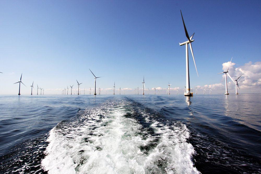Vil ha vindpark: Et norsk hjemmemarked for havvind er en forutsetning for at norske leverandørbedrifter skal klare å hevde seg i det globale havvindmarkedet, mener leverandørbedrifter. Bildet er fra Vattenfalls havvindpark Lillgrund i Sverige. Foto: Kjetil Malkenes Hovland